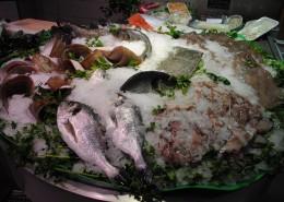 paralax-pescado